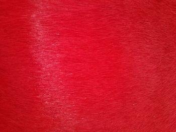 купить Ковер из натуральной кожи COW DIED RED SKIN, красный в Кишинёве