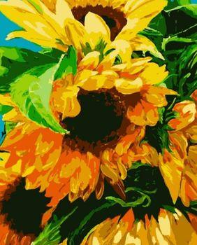 "PN2012 Картина по номерам Artissimo ""Подсолнух"", 3 *, 15 цветов, 40x50 см"
