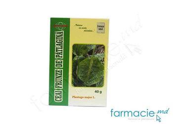 купить Patlagina frunze 40g (TVA 20%) (Medfarma) в Кишинёве