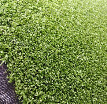 Ландшафтная профессиональная трава, ESTANCIA