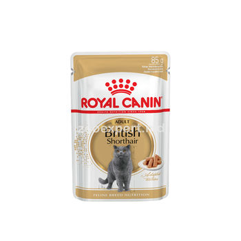 купить Royal Canin BRITISH SHORTHAIR ADULT ( в соусе ) 85 gr в Кишинёве