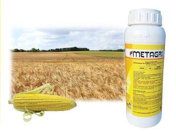 купить Метагри - гербицид для защиты посевов пшеницы - Агри Сайенсис в Кишинёве