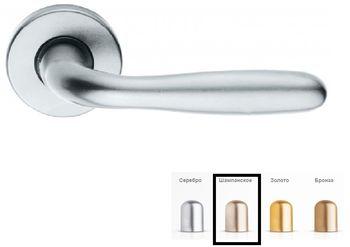 Дверная ручка на розетке Roma-F2 шампанское