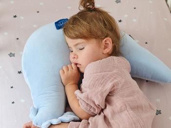 купить Подушка для кормления La Millou Grandma Dana's hen Dundee & Friends Blue в Кишинёве