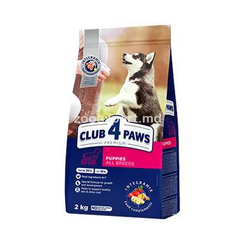 купить CLUB 4 PAWS для щенков всех пород в Кишинёве