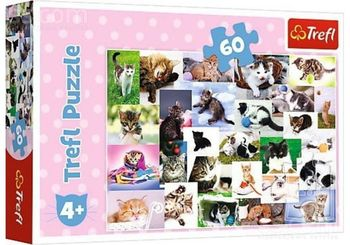 "Пазлы ""60"" - Cat's world, код 43132"