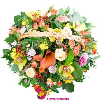 купить Бархатный сезон в Кишинёве