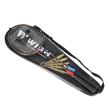 cumpără Rachete badminton 316K Wish TOP (3530) în Chișinău