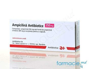 купить Ampicilina 250mg caps. N20 (Antibiotice) в Кишинёве