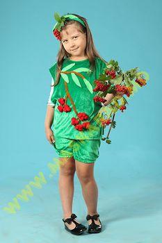 Карнавальный костюм: Рябина-калина
