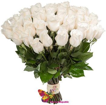 купить Букет из 51 белой розы   ГОЛЛАНДСКИЕ ПРЕМИУМ 80-90СМ в Кишинёве
