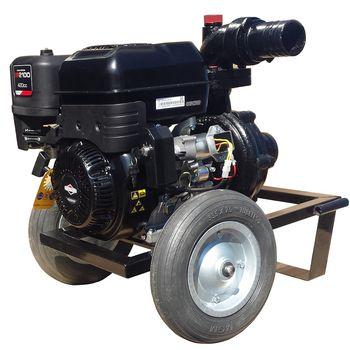 купить Мотопомпа DWP 420 BS4X- Горячая и остаточная вода в Кишинёве