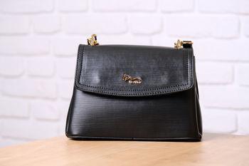 купить Женская сумка ID 9620 в Кишинёве