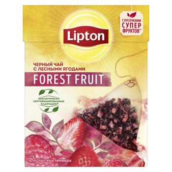 купить Lipton Nirvana Forest Fruit, 20 пак. в Кишинёве