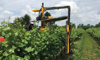 купить Обрезчик для виноградников с роторными ножами CFCU/500 - Оризонти в Кишинёве