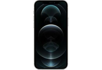 купить Apple iPhone 12 Pro Max 256Gb, Silver в Кишинёве