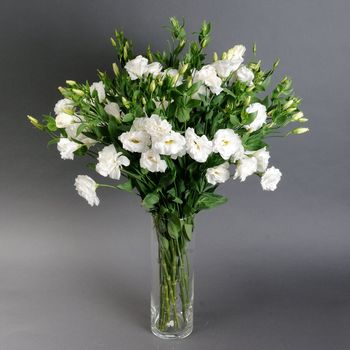 """купить Ваза """"Цилиндр' - 1 шт. для букета цветов ( S,M,L) в Кишинёве"""