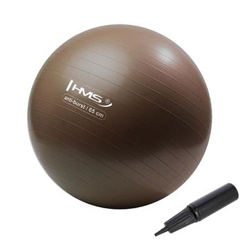 Мяч гимнастический с насосом d=65 см HMS 17-42-121 brown (4822)