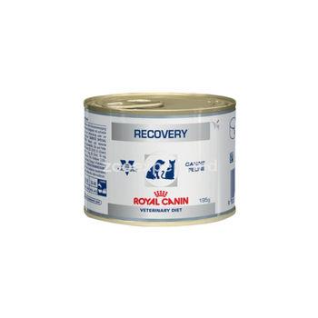купить Royal Canin RECOVERY 195 gr в Кишинёве