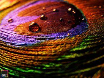 Картина на холсте Абстракция 0015