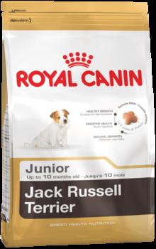 cumpără Royal Canin JACK RUSSELL JUNIOR 3 kg în Chișinău