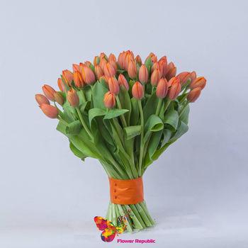 купить Оранжевые голландские тюльпаны поштучно в Кишинёве