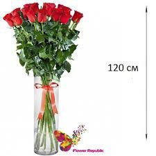 купить Роза красная Ecuador 120 см Поштучно в Кишинёве