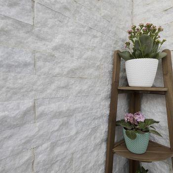 купить Мраморная катания Молоко Scapitata 7,5 х 30 х 1,5 см в Кишинёве