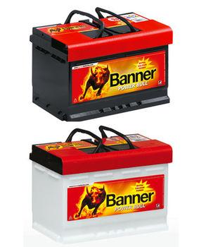 Banner POWER BULL P 5519