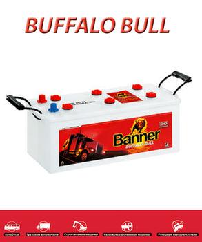 Banner BUFFALO BULL 64035