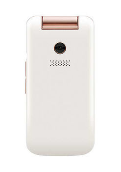 купить Philips E255 Dual Sim,White в Кишинёве