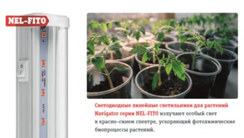 cumpără (U) LED (8Wt) Lampa Navigator 61 031 NEL-FITO-8-LED 594 mm în Chișinău