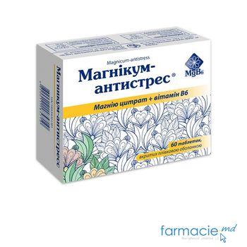 купить Magnicum-Antistres® comp. filmate 100 mg/10 mg N12x5 в Кишинёве