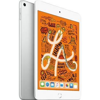cumpără Apple iPad Mini (2019) 64Gb 4G, Silver în Chișinău