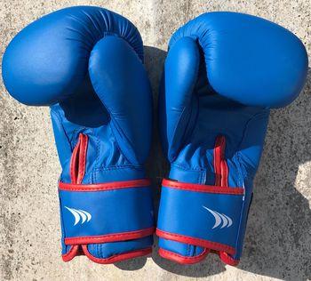 Перчатки боксерские 6 oz Yakimasport Shark 100343 (4850)
