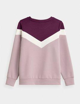 купить Пуловер Casual WOMEN'S SWEATSHIRT BLD025 в Кишинёве