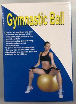 Мяч гимнастический с насосом d=75 см (1758)