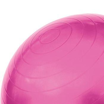 Мяч гимнастический с насосом d=55 см HMS pink (4824)