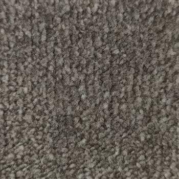 Ковровые покрытия CANNES, LEVER 309  AB, 100% PA