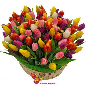 купить Корзина с разноцветными тюльпанами - 51 штука в Кишинёве