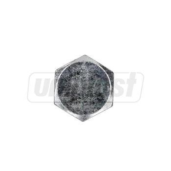 купить Болт 16 x  70 - неполная резьба, оцинков. SK (RU) в Кишинёве