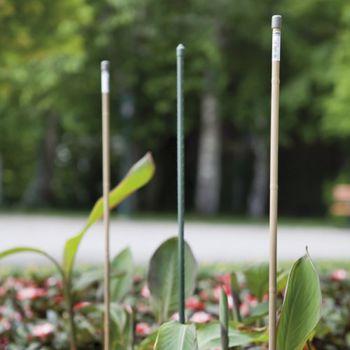 купить Опора  для растениий 11х1200 мм мет/пласт (5623/17) в Кишинёве