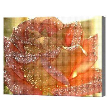 Trandafir Sclipitor 30x40