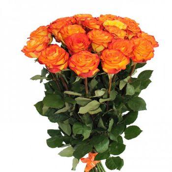 купить Букет из 25 оранжевых роз 70-80CM в Кишинёве