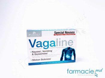 купить Vagaline 3Chenes comp. N15 (pt. rau de miscare) в Кишинёве