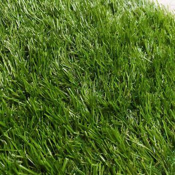 купить Ландшафтная трава, NATURE (4m.) в Кишинёве