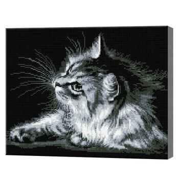 Черно-белый кот, 40x50 см, алмазная мозаика QA202575
