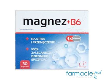 купить Magneziu B6 caps 375g+1,4mg N30 в Кишинёве