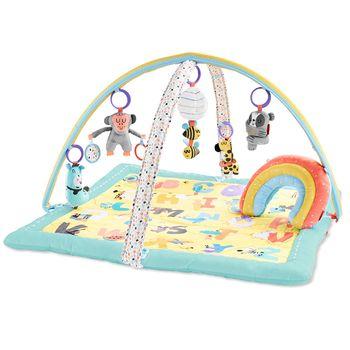 купить Skip Hop Коврик развивающий игровой малыш и алфавит в Кишинёве