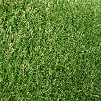 Ландшафтная трава RENNESS